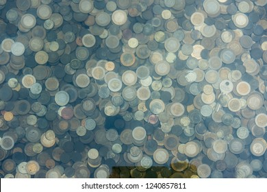 Coins in a Wishing Well
