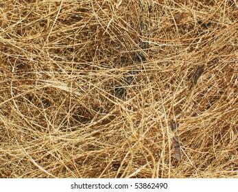 Coir or coconut fiber texture