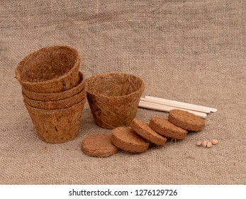 Coir plant pots and compressed compost on hessian. With wooden plant labels. Environmentally friendly spring gardening.