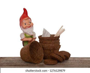 Coir plant pots and compressed compost with wooden labels, seeds and generic garden gnome. Environmentally friendly spring gardening. Isolated on white background.
