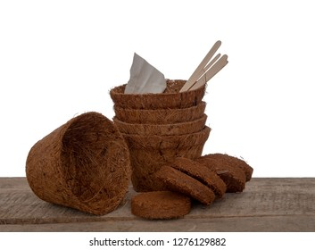 Coir plant pots and compressed compost with seeds and wooden labels. Environmentally friendly spring gardening. Isolated on white background.
