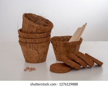 Coir plant pots and compressed compost with seeds and wooden labels. Environmentally friendly spring gardening. Pale background.