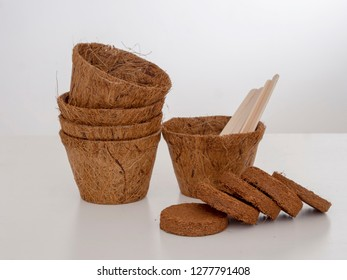 Coir plant pots and compressed compost with wooden labels. Environmentally friendly spring gardening. Pale background.