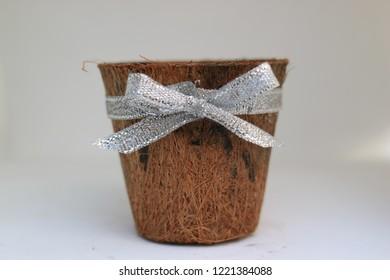 coir pots environment