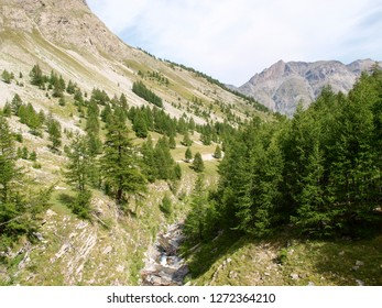 Col de la Cayolle, France: pass road and surrounding mountains