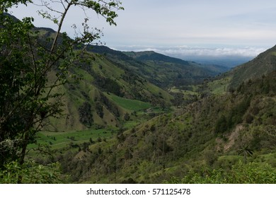 Col view of the Cocora Valley in Colombia
