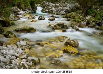 Cold alpine Lepenica river in Spring at Sunikov Vodni Gaj Nature Preserve in Triglav National Park Julian Alps Lepena Valley Slovenia - Shutterstock ID 1264256518