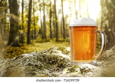 cold beer and background of moss in forest