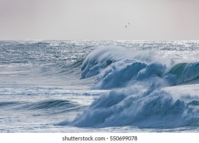 Cold blue ocean waves break and pound into the surf while birds fly in the stormy winds.