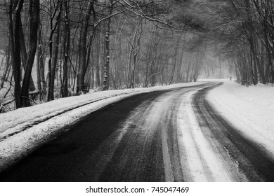 Cold chilly forrest road in winter landscape