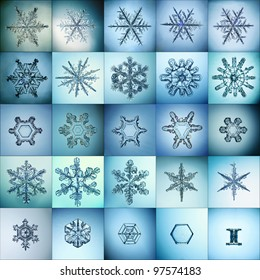 cold crystal gradient snowflakes - microscopic photo set collection