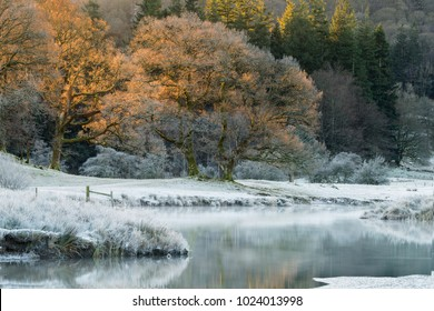 Cold and frosty winter morning at the River Brathay in the Lake District with warm golden light.