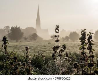Cold morning, Salisbury