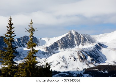 Cold Mountain Peak - This is an image of a snowy mountain peak shot with an out of focus pine trees in the foreground. Shot with a shallow depth of field.