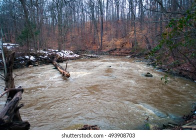 Cold Rock Creek
