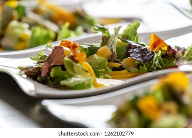 cold salad with vegetables, fruits and edible flowers from the central highlands of Ecua