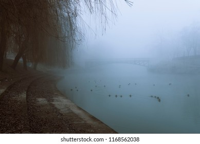Cold season scenery in Ljubljana, slovenian main city, with the river Ljubljanica and its shore covered with a dense mist.