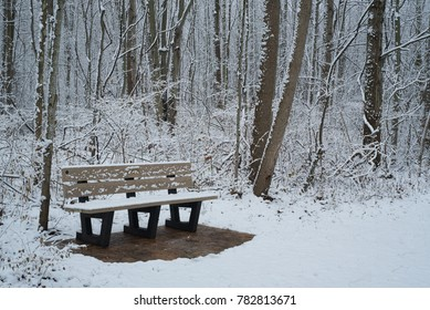 Cold and snowy bench on a snow covered trail