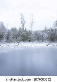 A cold snowy day in Massachusetts, looking out over a frozen pond towards the forest beyond