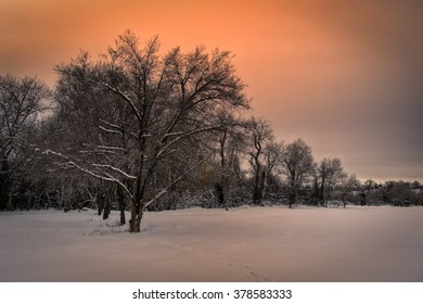 Cold snowy field with a orange sunset in Utah USA.