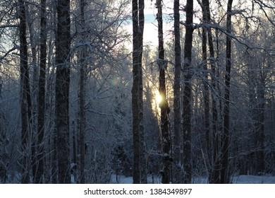 Cold winter in Alaska 2018