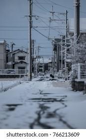 Cold winter. Snowy landscape