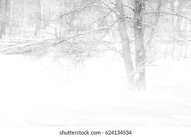 Cold winter storm
