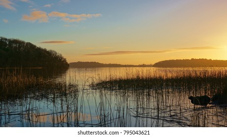 A cold winters morning in Lough Key