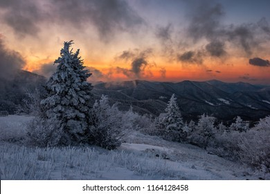 A cold wintry morning along the Appalachian Trail in Tennessee