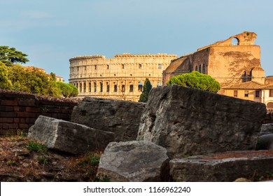 Coliseum is the main Landmark of Rome - Rome - Italy Coliseum is one of the main travel attractions - The Main symbol of Rome