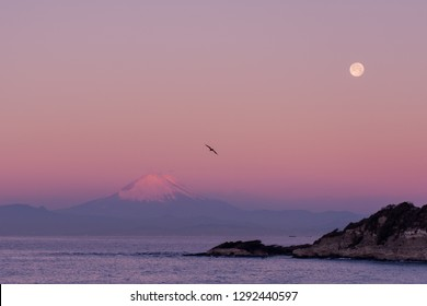 Collaboration of Super Blood Wolf Moon and Pink Fuji in Japan