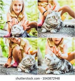 Collage of the 4 photos of little girl playing with the british cat outdoors