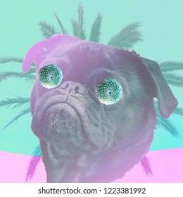 collage art, dog king, pop art style, minimal vibrant background, swag mood
