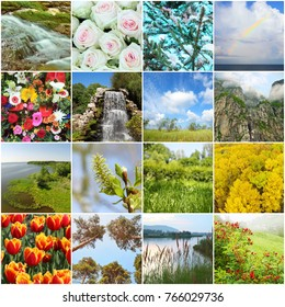 Collage with beautiful flowers, landscapes, buds, waterfalls, branches