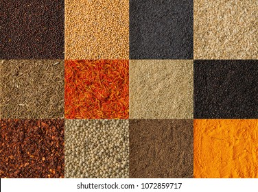 Collage of different herbs and spices background. Collection of herbs and spices