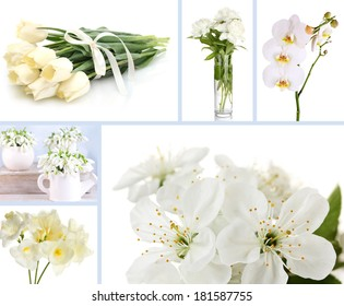 White rose flowers green leaves on stock photo edit now 428477071 collage of different white flowers mightylinksfo