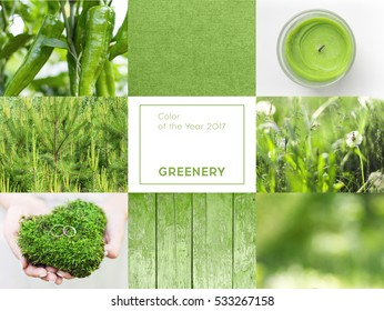 collage with greenery color of the year 2017 Pantone