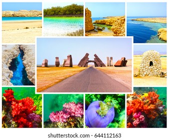 The collage from images of Ras Muhammad National Park, Egypt