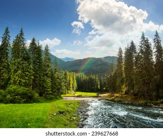 collage landscape with pine trees in mountains and a river in front flowing to lake in sunset light with rainbow