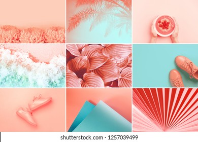 Collage made of nine photos in trendy coral color. Trendy color 2019.
