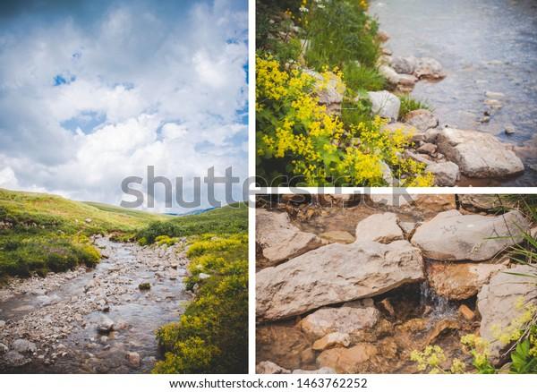 Collage Mountain Plants Landscapes Views Stock Photo Edit Now