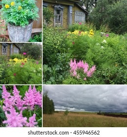 Collage of old Haus, countryside landscape, flowers and greens