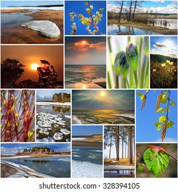 Collage on the theme of spring. The nature of Russia,Siberia,Novosibirsk region