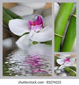 collage with orchid flower and bamboo