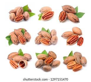 Collage of pecan nuts with leaves close up on white background