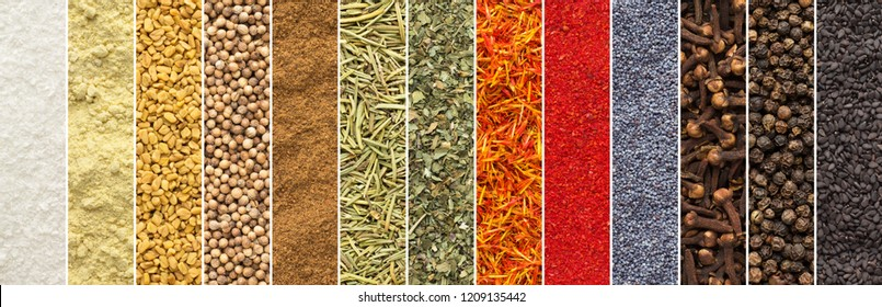 Collage of spices and herbs for design packaging with food. seasonings background palette in color.