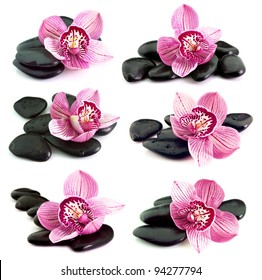 Collage of the stones with orchid flower