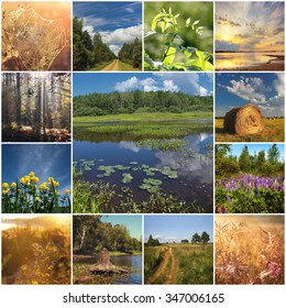 Collage with types of the summer nature. Nature in the summer.