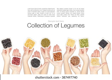 collage of various legumes in a hands isolated on white background