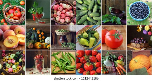 Collage with vegetables, berries and fruits: a set of square pictures. You can make a seamless pattern. Cucumbers and tomatoes, Apple and strawberry, plum and peach.
